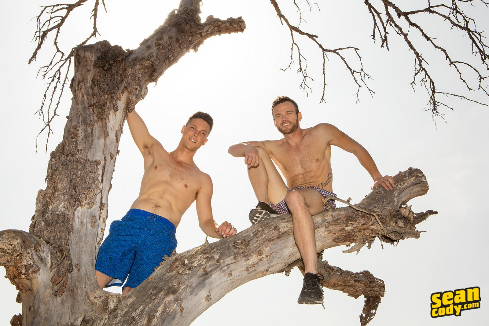 American gay studs from Sean Cody