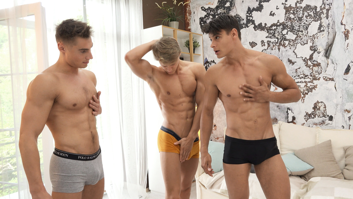 Belami studs with big cocks having a threesome