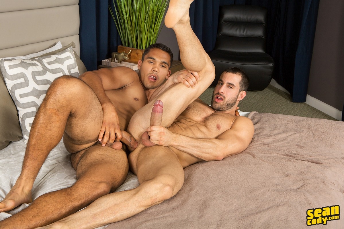 Hardcore Gay Stud Porn