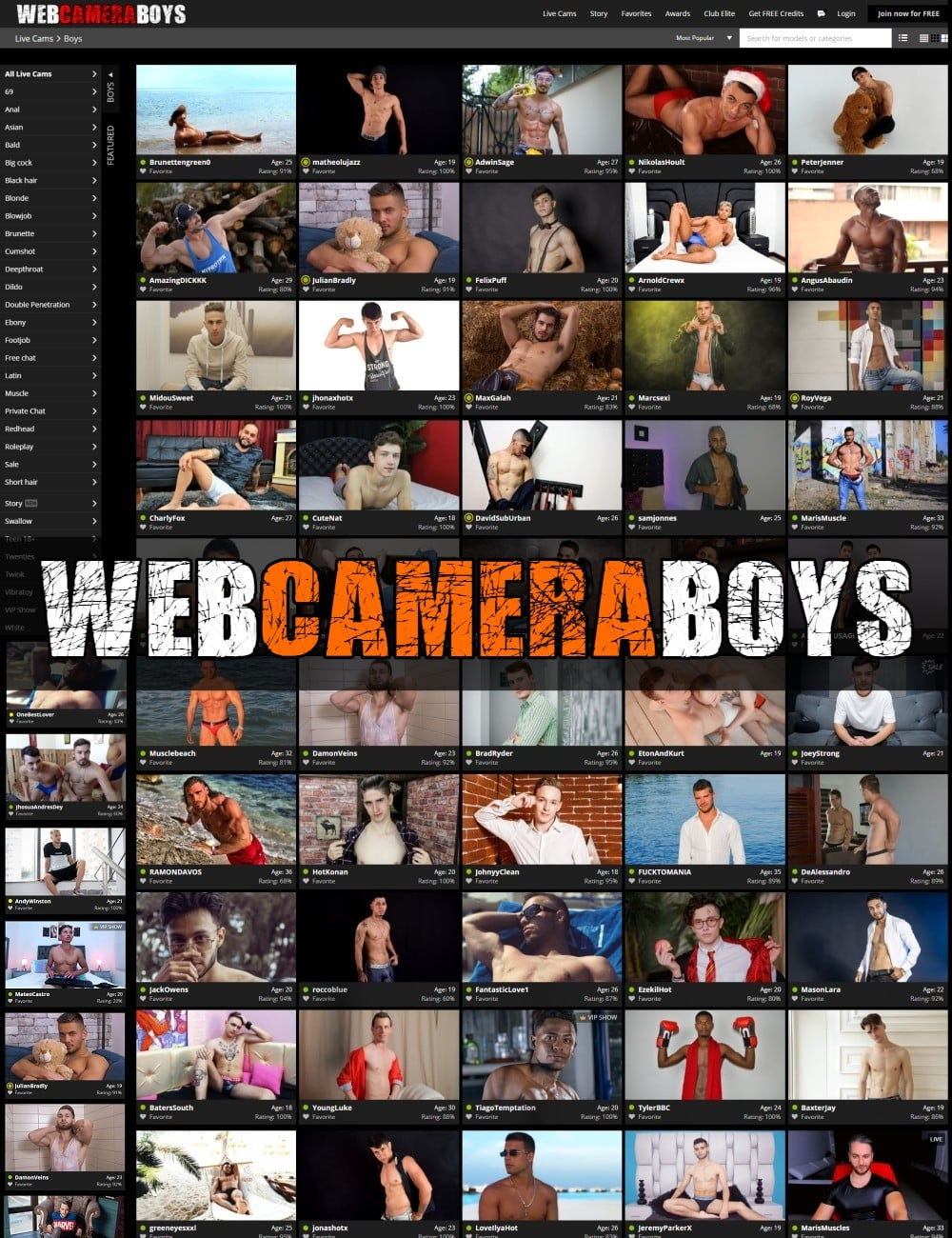 Web Camera Boys