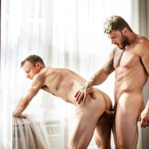 William Seed gay porn